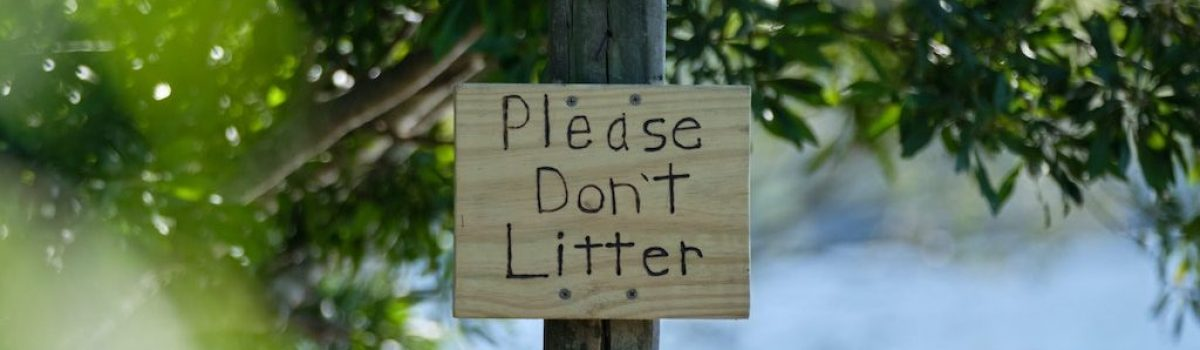What to Do with All the Litter…