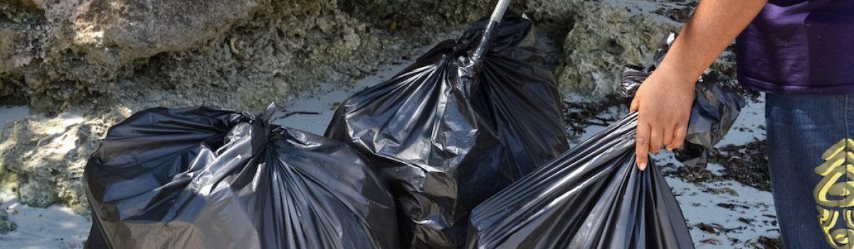 Legislative Efforts to Control Plastic